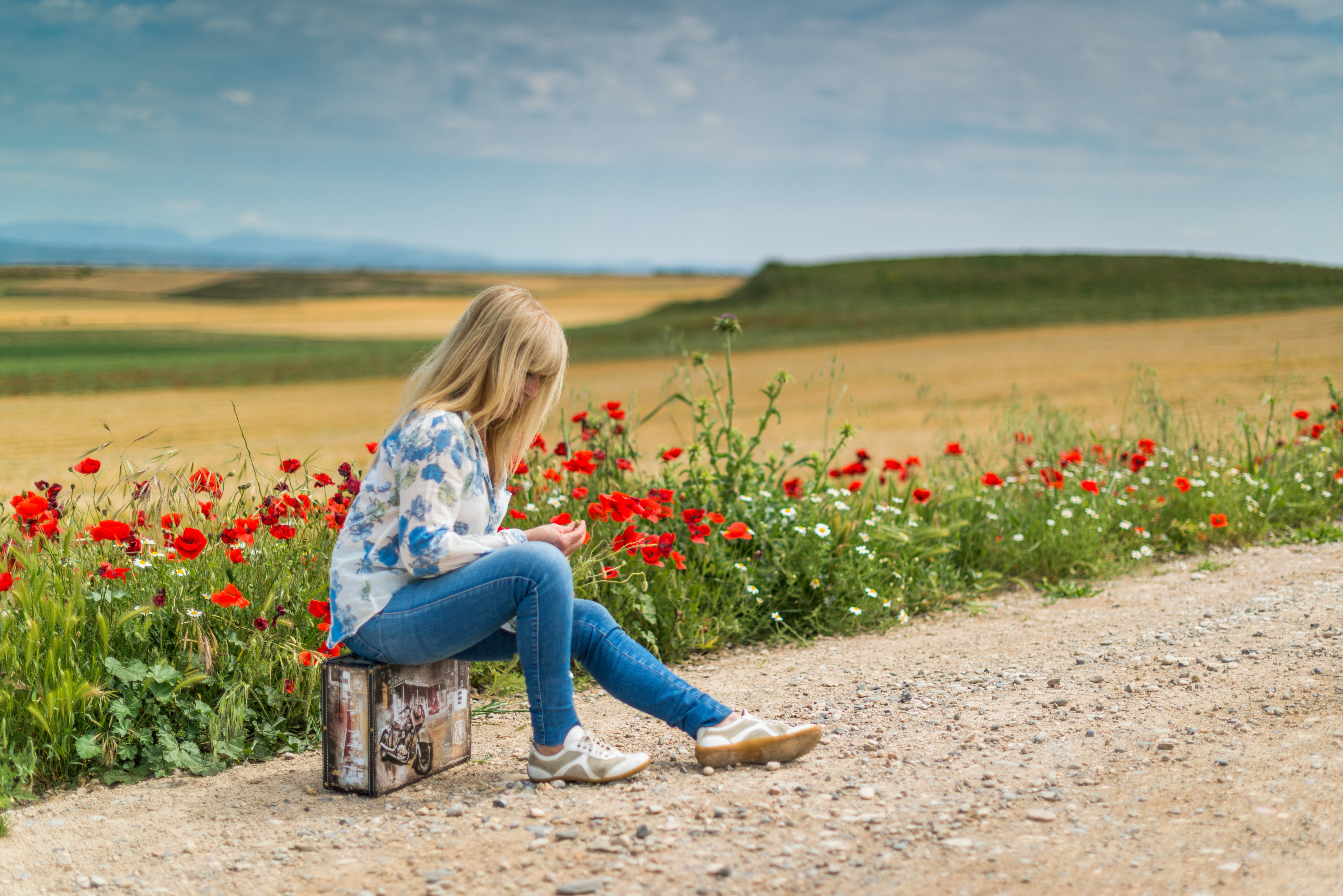 girl-near-red-petal-flowers-at-daytime-160939